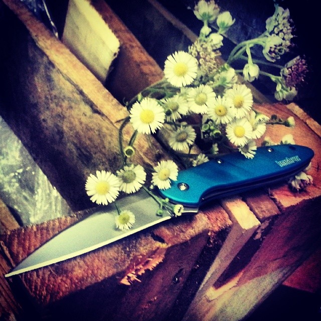 Hope you all are having a wonderful Sunday, happymothersday from www.Kershaw-Knives.net kershaw kershawknives leek knife folder edc knifefanatics knifeSunday flowers mom