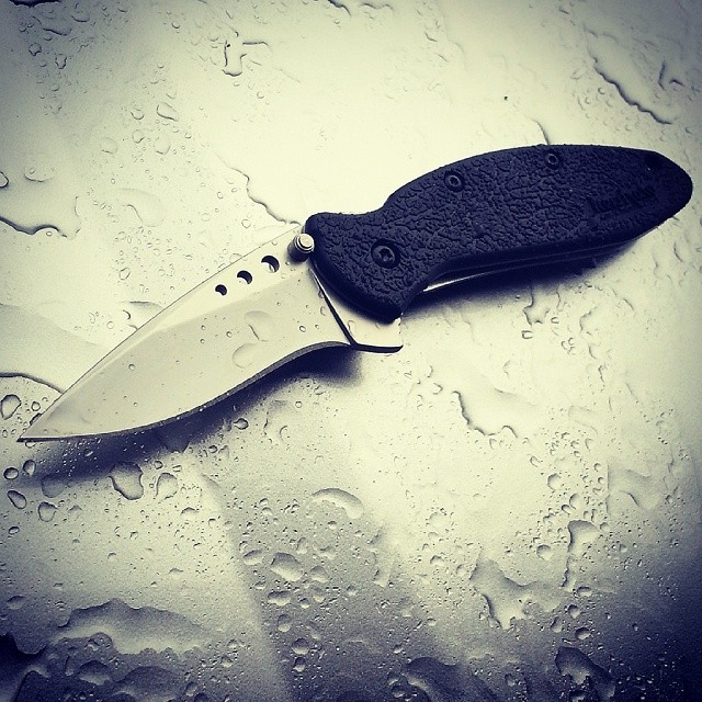 Kershaw Ken Onion Scallion 1620