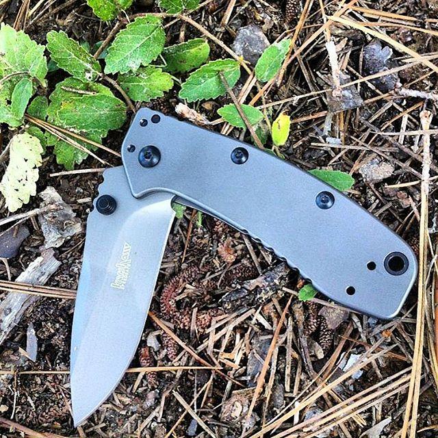 Kershaw 1556TI Cryo II Assisted Opening Knife