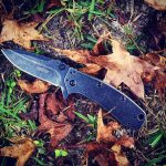 As the leaves are falling, fall into love with the Kershaw Cryo II Blackwash 1556BW. Blackwash finish on both sides.