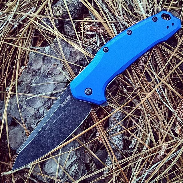 The Kershaw Link Navy Blue Blackwash Knife. It is s flipper style knife with a 3.25 inch Assisted Opening blade. The handle is machined aluminum with a navy blue finish.  #kershaw #kershawknives #link #navyblue #blackwash #flipper #assistedopening #aluminum